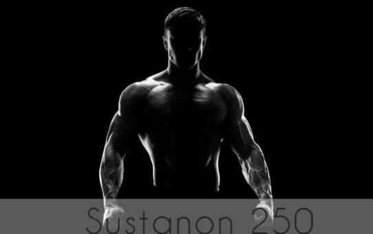 Course for beginner Sustanon-250 solo mass